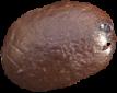 bean4